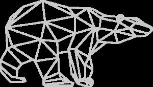 FC bear geometric