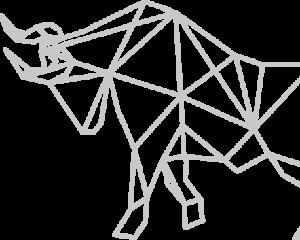 FC bull geometric